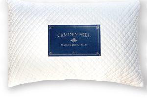 Camden Hill Memory Foam Tencel Pillow Review