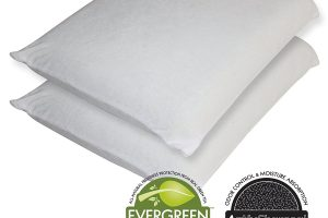 Sleep Master Memory Foam Traditional Pillow Review